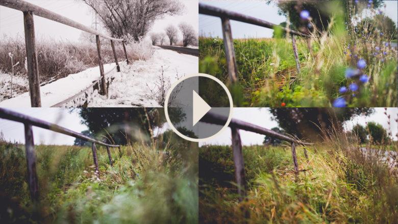 one year zeitraffer video